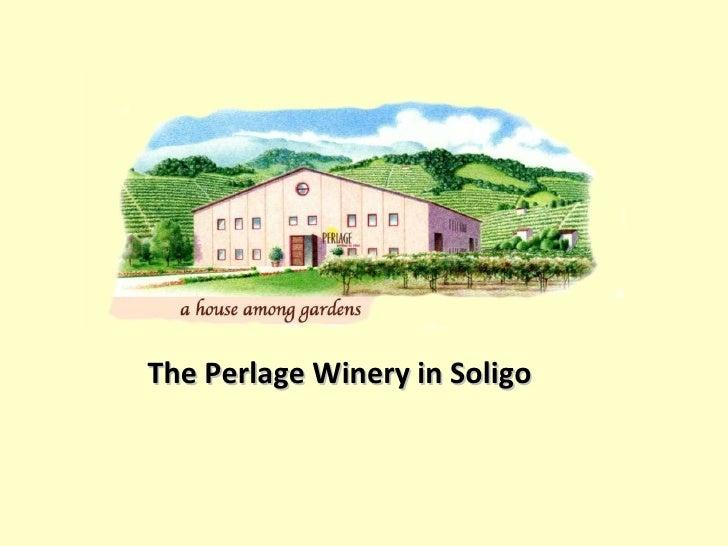 Perlage and the Italian Organic Prosecco