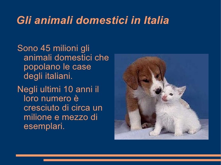 Animali domestici in condominio animali domestici in for Cane abbaia condominio legge