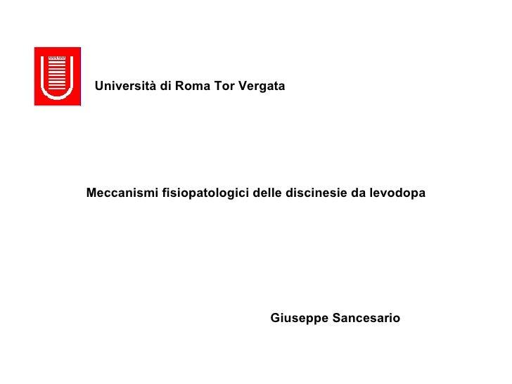 Meccanismi fisiopatologici delle discinesie da levodopa Università di Roma Tor Vergata Giuseppe Sancesario