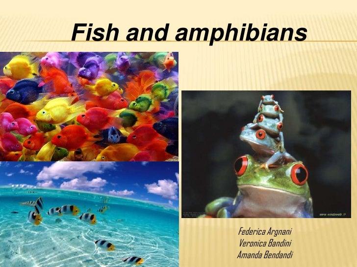 Fish and amphibians             Federica Argnani             Veronica Bandini             Amanda Bendandi