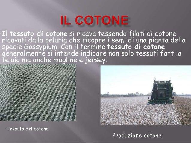 Il tessuto di cotone si ricava tessendo filati di cotonericavati dalla peluria che ricopre i semi di una pianta dellaspeci...