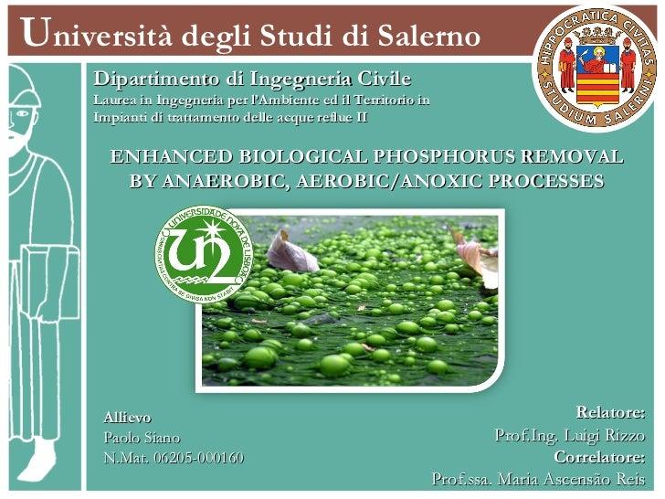 U niversità degli Studi di Salerno Dipartimento di Ingegneria Civile Laurea in Ingegneria per l'Ambiente ed il Territorio ...