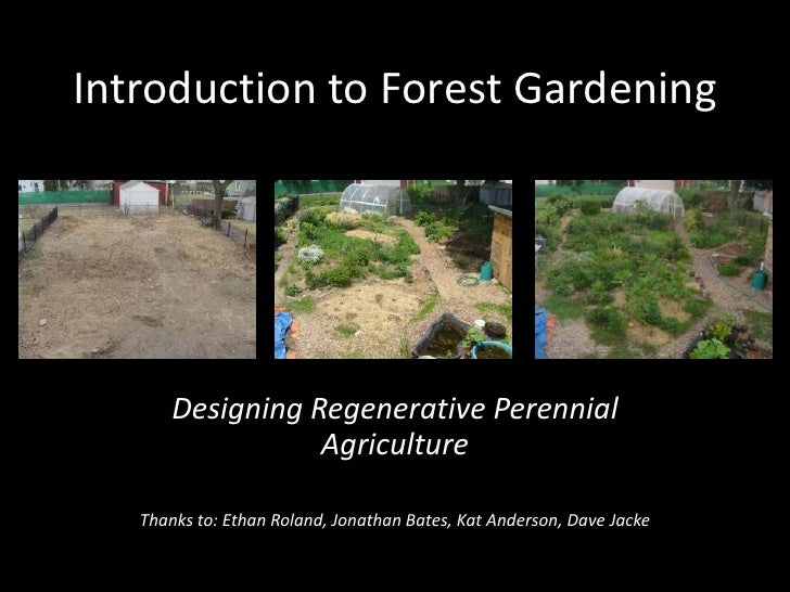 Introduction to Forest Gardening<br />Designing Regenerative Perennial Agriculture<br />Thanks to: Ethan Roland, Jonathan ...