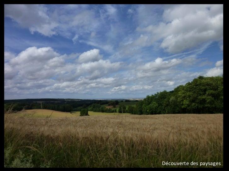 Une basse vallée verrouilléePerception de la vallée de lOuanne par ses massifs forestiers                                 ...