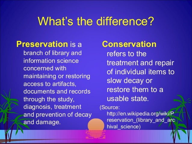 Preservation Of Environment Essay