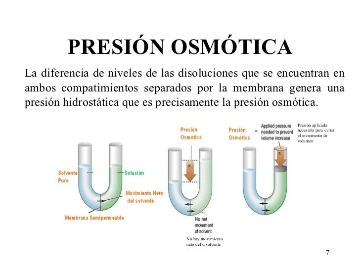 presion osmotica pdf free download bonus purananuru pdf