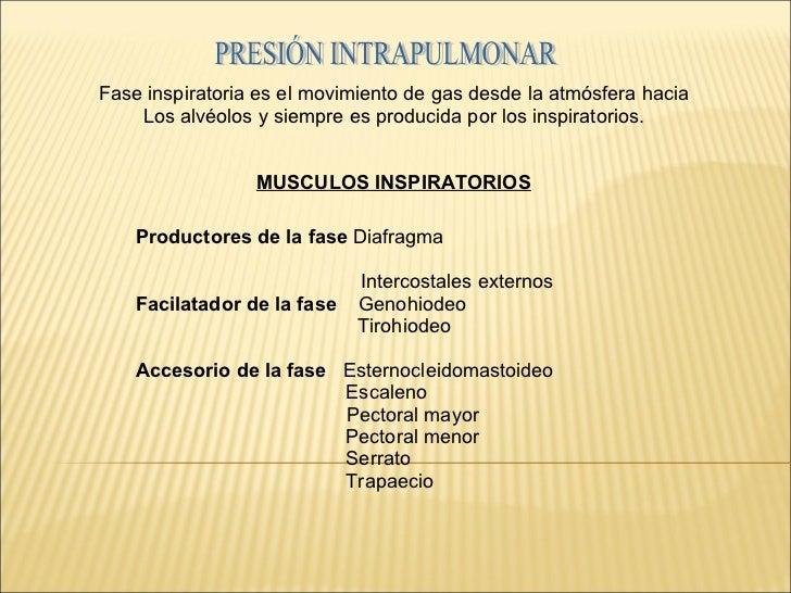 Fase inspiratoria es el movimiento de gas desde la atmósfera hacia Los alvéolos y siempre es producida por los inspiratori...