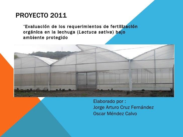 """PROYECTO 2011 """"Evaluación de los requerimientos de fertilización orgánica en la lechuga (Lactuca sativa) bajo ambiente pro..."""