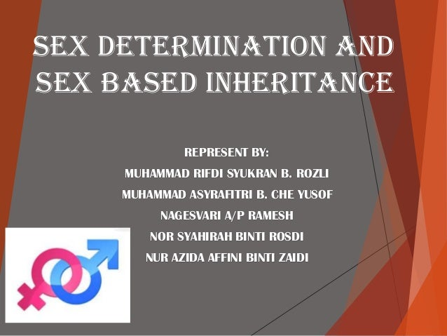 SEX DETERMINATION AND SEX BASED INHERITANCE REPRESENT BY: MUHAMMAD RIFDI SYUKRAN B. ROZLI MUHAMMAD ASYRAFITRI B. CHE YUSOF...