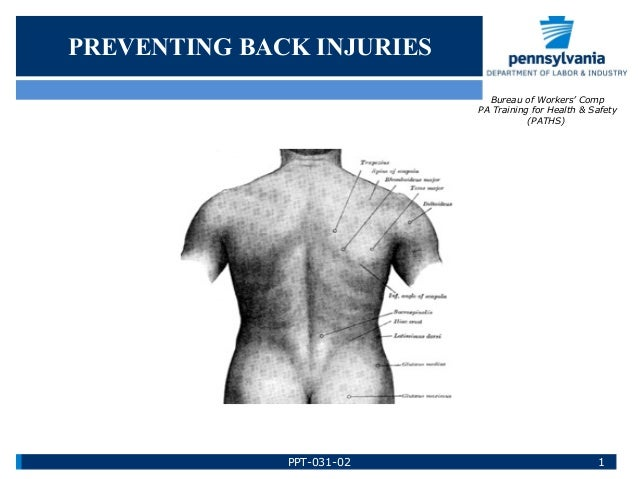 PREVENTING BACK INJURIES Bureau of Workers' Comp PA Training for Health & Safety (PATHS) 1PPT-031-02