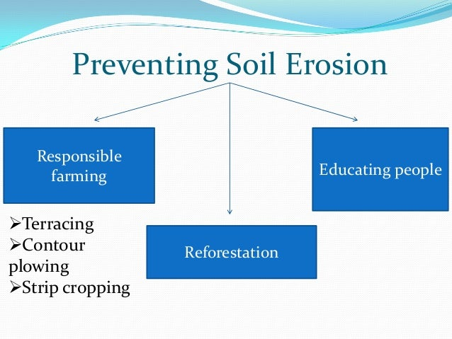 gallery prevention of soil erosion for kids
