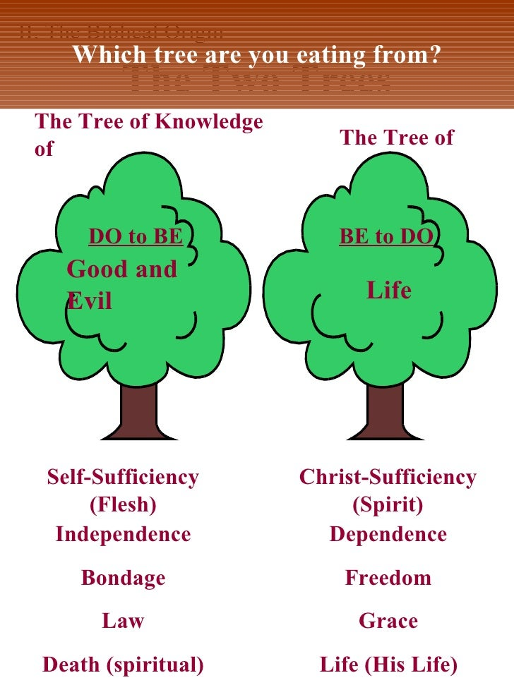 an analysis of tree of the knowledge of good and evil An important teaching on the tree of knowledge and the tree of life, the corrupt tree and the good tree, and how this relates to us today jesus delivered us from the conscience of the tree of good and evil.