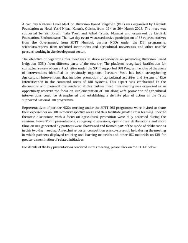 Preview text (dbi partners meet 2013)