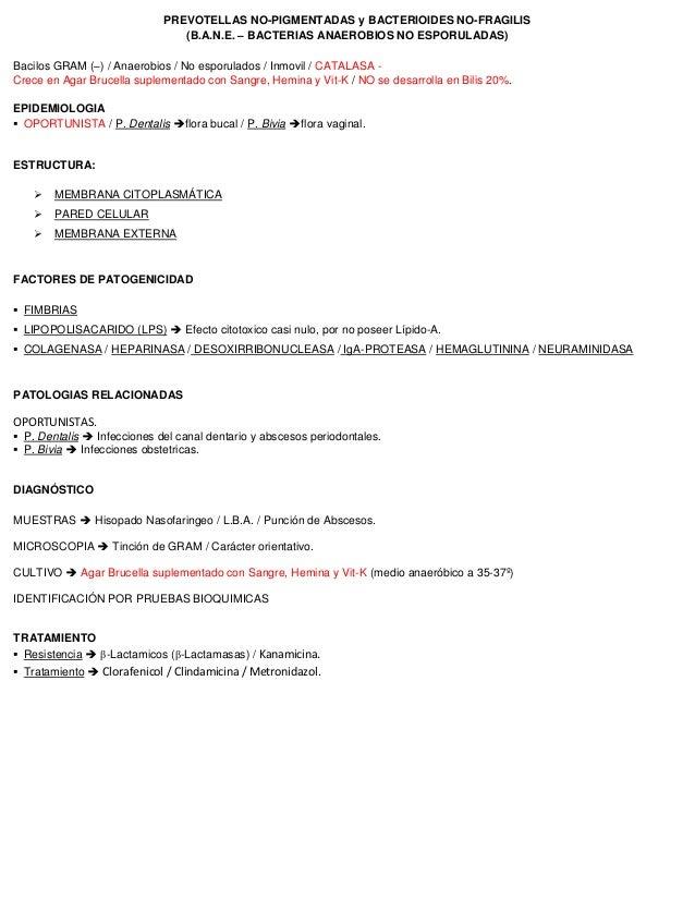 PREVOTELLAS NO-PIGMENTADAS y BACTERIOIDES NO-FRAGILIS (B.A.N.E. – BACTERIAS ANAEROBIOS NO ESPORULADAS) Bacilos GRAM (–) / ...