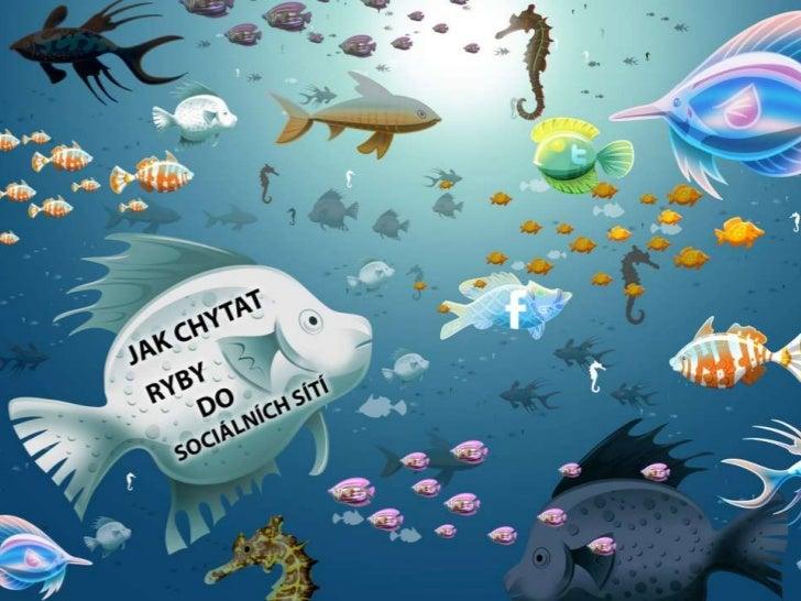 Jak chytat ryby do sociálních sítí