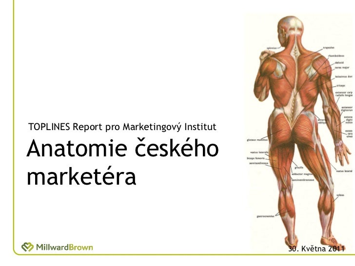 TOPLINES Report pro Marketingový InstitutAnatomie českéhomarketéra                                            30. Května 2...