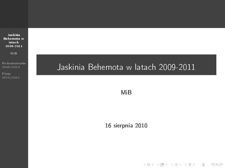 Prezentacja 2010