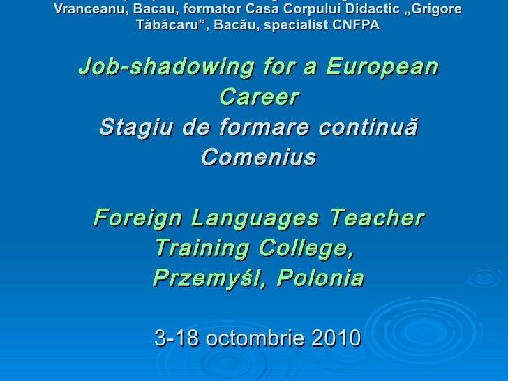 Job Sahdowing for a European Career