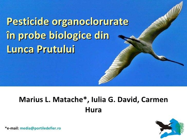 Marius L. Matache*, Iulia G. David, Carmen Hura Pesticide organoclorurate în probe biologice din Lunca Prutului   *e-mail:...