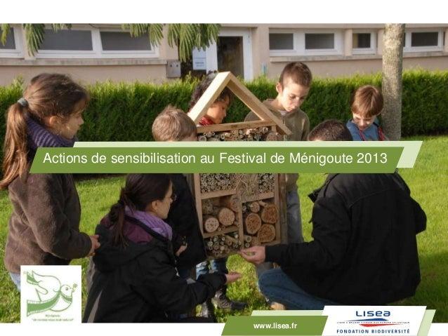 www.lisea.fr Actions de sensibilisation au Festival de Ménigoute 2013 www.lisea.fr
