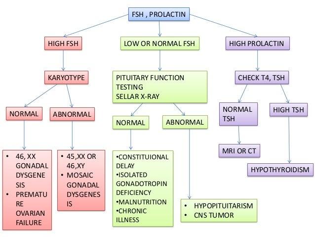 primary and secondary amenorrhea pdf
