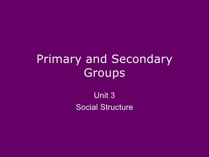 Primary and Secondary        Groups           Unit 3      Social Structure