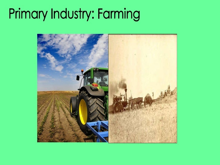 Primary Industry: Farming