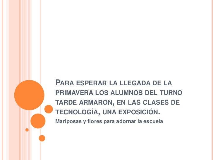 PARA ESPERAR LA LLEGADA DE LAPRIMAVERA LOS ALUMNOS DEL TURNOTARDE ARMARON, EN LAS CLASES DETECNOLOGÍA, UNA EXPOSICIÓN.Mari...