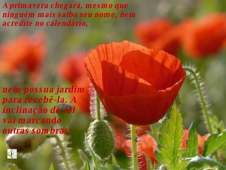 A primavera chegará, mesmo que ninguém mais saiba seu nome, nem acredite no calendário,  nem possua jardim para recebê-la....