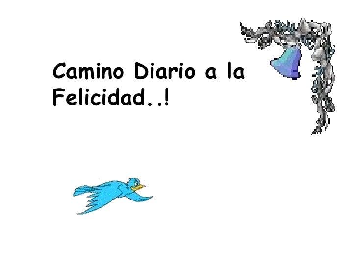 Camino Diario a la Felicidad..!