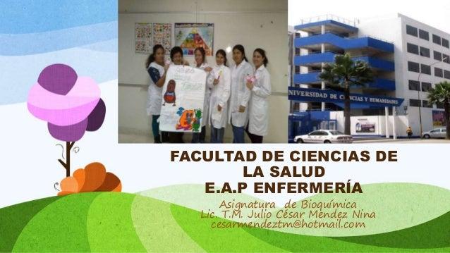 FACULTAD DE CIENCIAS DE LA SALUD E.A.P ENFERMERÍA Asignatura de Bioquímica Lic. T.M. Julio César Mendez Nina cesarmendeztm...