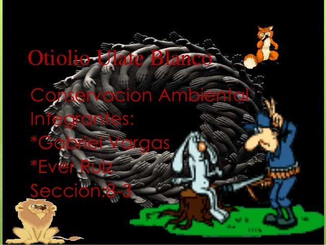 Otiolio Ulate Blanco Conservacion Ambiental Integrantes: *Gabriel Vargas *Ever Ruiz Seccion:8-3