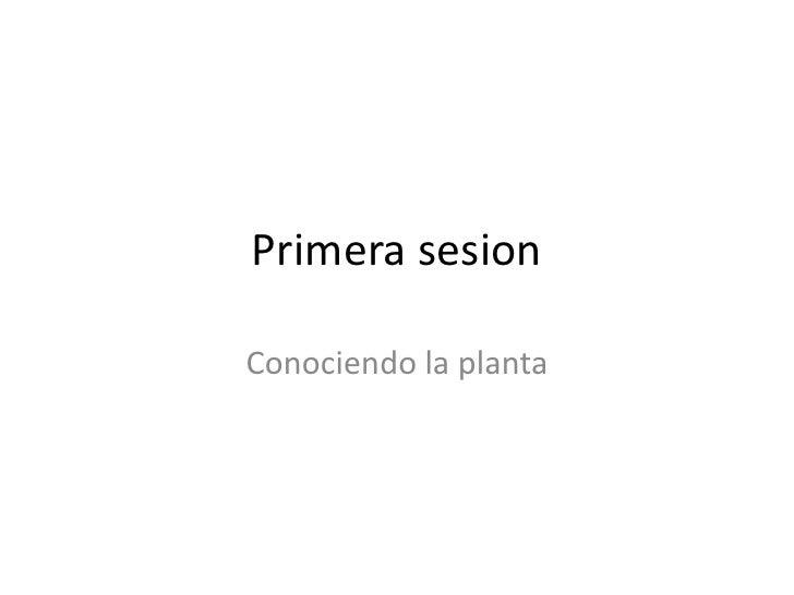 Primera sesion<br />Conociendo la planta<br />