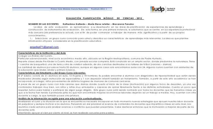 Primer Ciclo Módulo Ciencia Naturales.   Postítulo 2011 -I                                          EVALUACIÓN PLANIFICACI...