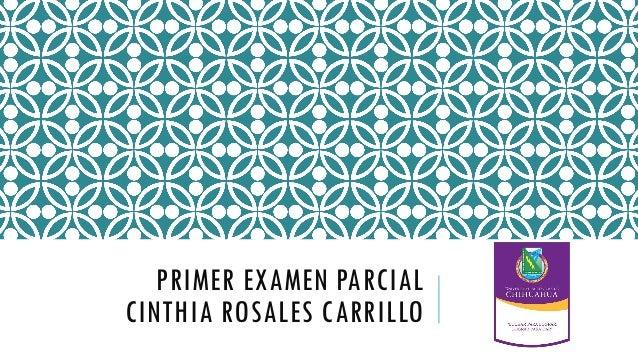 PRIMER EXAMEN PARCIAL CINTHIA ROSALES CARRILLO