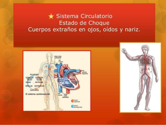 Sistema Circulatorio Estado de Choque Cuerpos extraños en ojos, oídos y nariz.