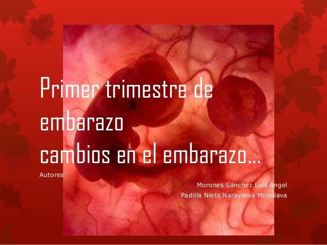 Primer trimestre deembarazocambios en el embarazo…Autores:Morones Sánchez Luis ÁngelPadilla Nieto Narayama Miroslava
