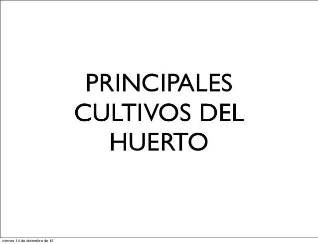 PRINCIPALES                                CULTIVOS DEL                                   HUERTOviernes 14 de diciembre de...