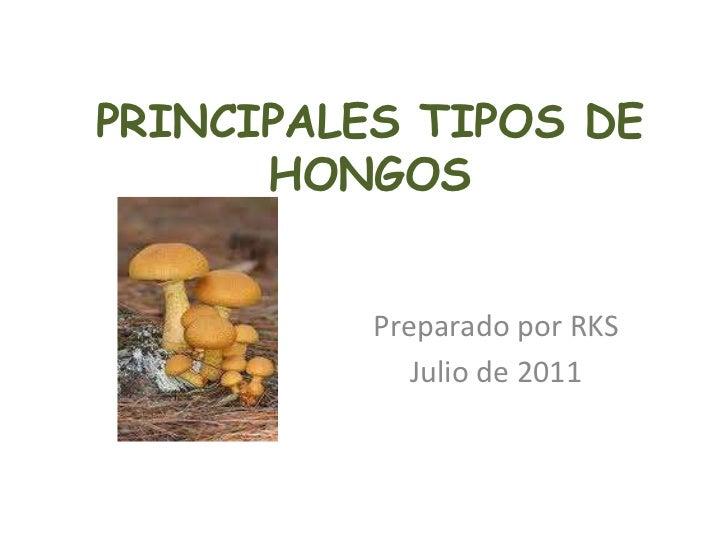 PRINCIPALES TIPOS DE HONGOS<br />Preparado por RKS<br />Julio de 2011<br />