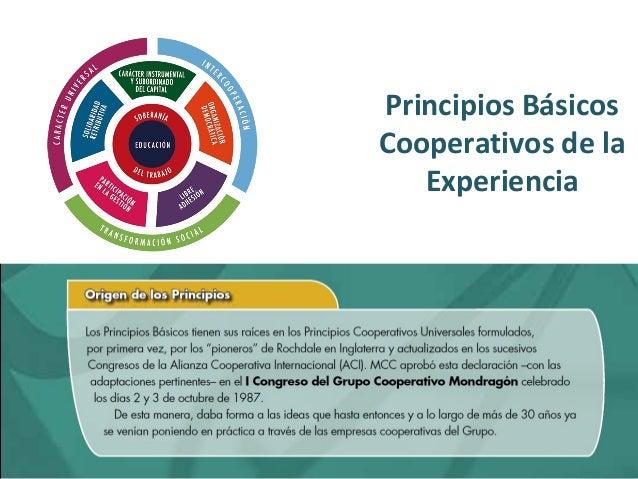 Principios Básicos  Cooperativos de la  Experiencia