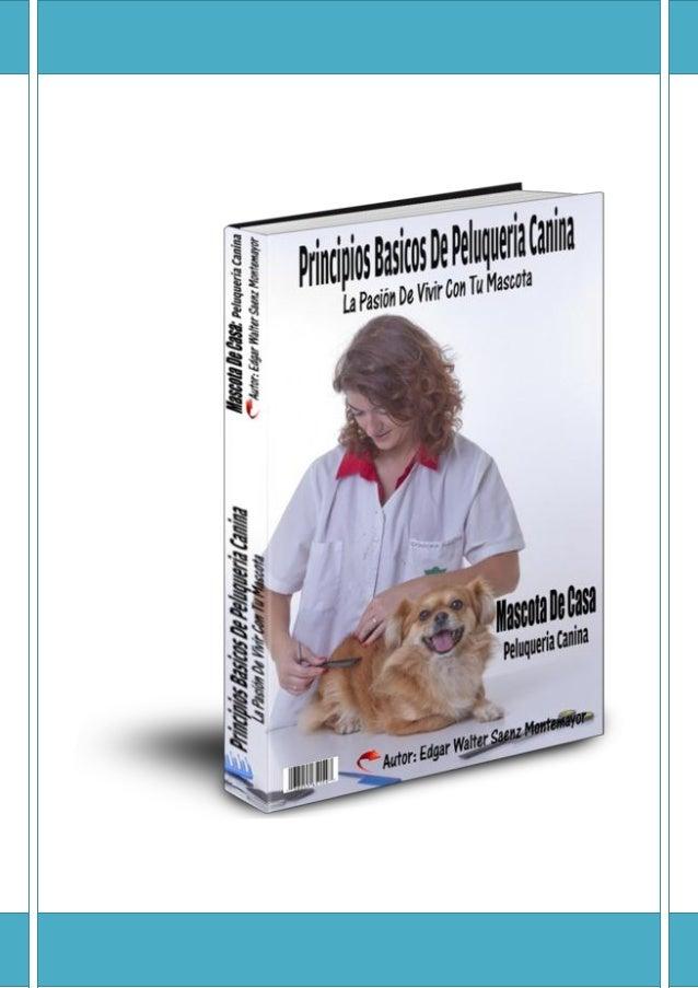 Principio basicos peluquer+¡a-canina-