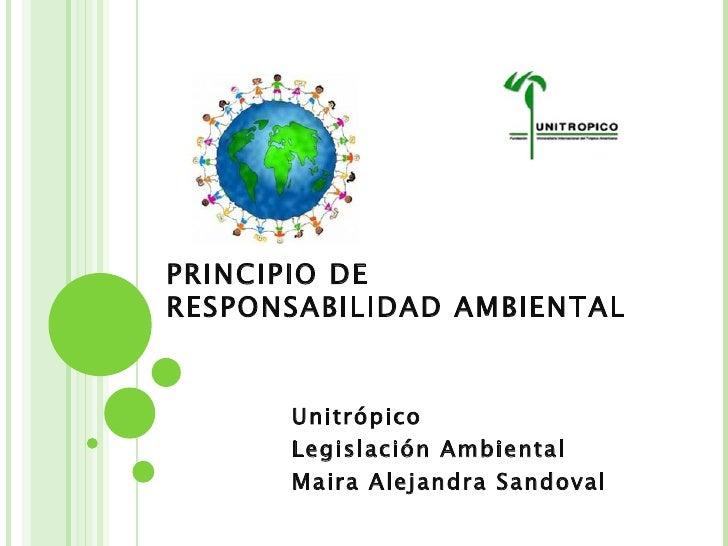 Principio De Responsabilidad.