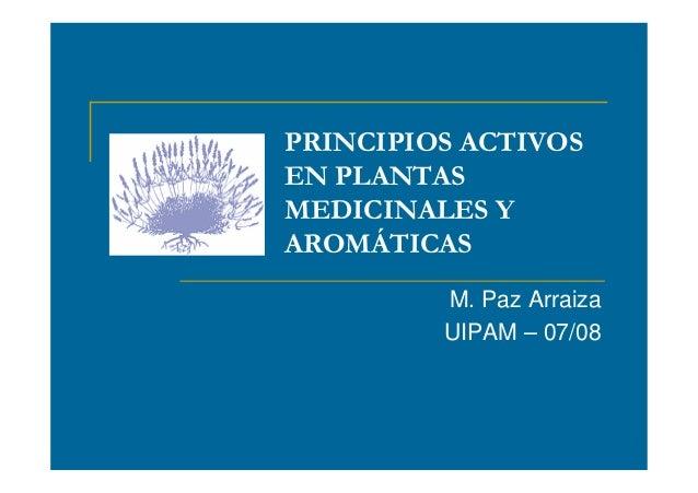 PRINCIPIOS ACTIVOS EN PLANTAS MEDICINALES Y AROMÁTICAS M. Paz Arraiza UIPAM – 07/08