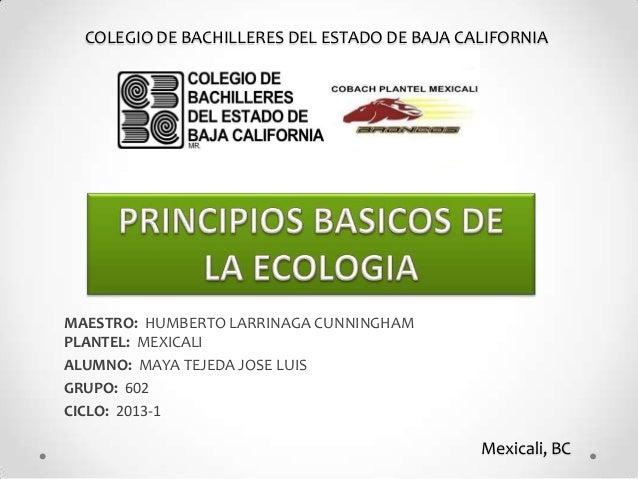 COLEGIO DE BACHILLERES DEL ESTADO DE BAJA CALIFORNIAMAESTRO: HUMBERTO LARRINAGA CUNNINGHAMPLANTEL: MEXICALIALUMNO: MAYA TE...