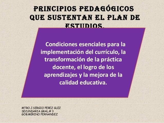 PRINCIPIOS PEDAGÓGICOS QUE SUSTENTAN EL PLAN DE ESTUDIOS. Condiciones esenciales para la implementación del currículo, la ...