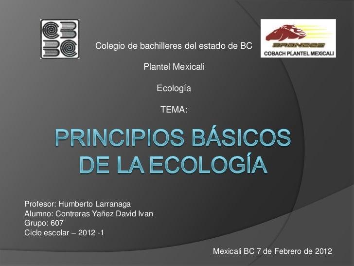 Principios básicos de la ecología