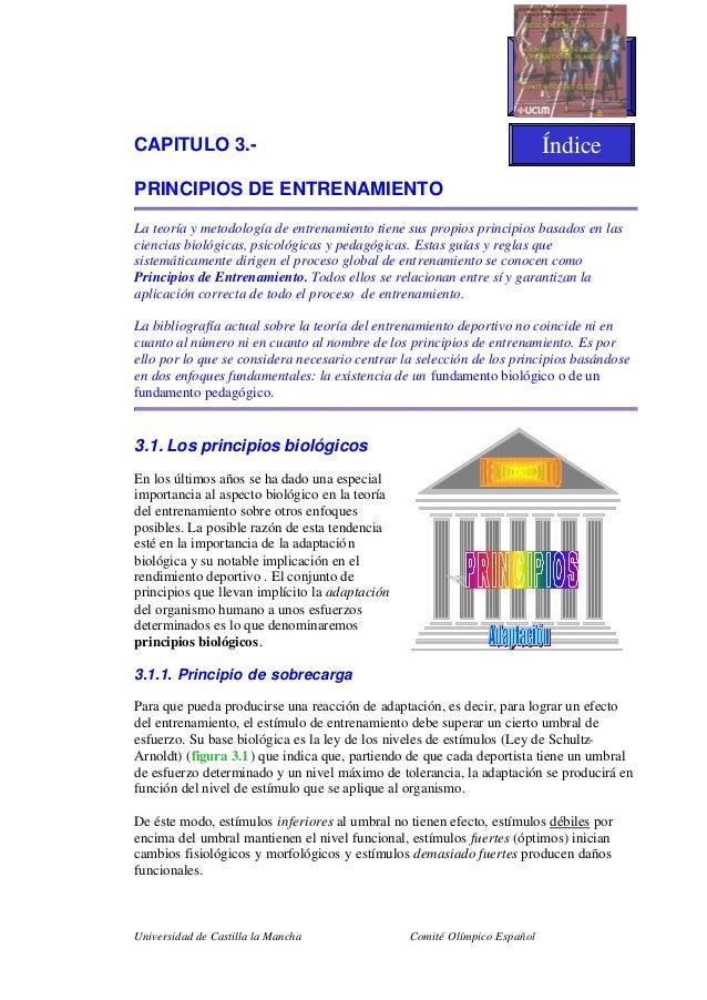Universidad de Castilla la Mancha Comité Olímpico EspañolCAPITULO 3.-PRINCIPIOS DE ENTRENAMIENTOLa teoría y metodología de...