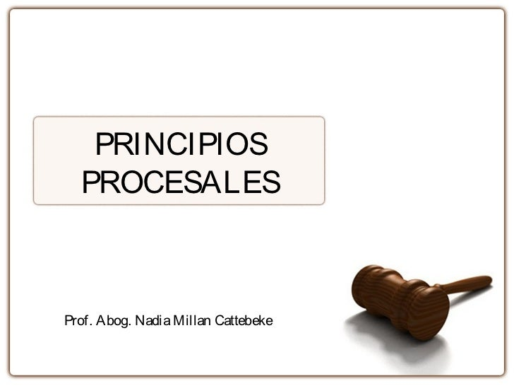 PRINCIPIOS  PROCESALESProf. Abog. Nadia Millan Cattebeke