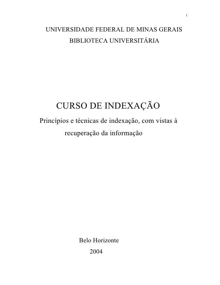 1  UNIVERSIDADE FEDERAL DE MINAS GERAIS          BIBLIOTECA UNIVERSITÁRIA     CURSO DE INDEXAÇÃOPrincípios e técnicas de i...