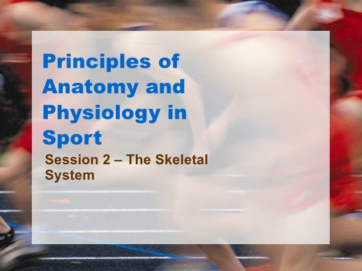 Principles of Anatomy and Physiology in Sport Session 2 – The Skeletal System